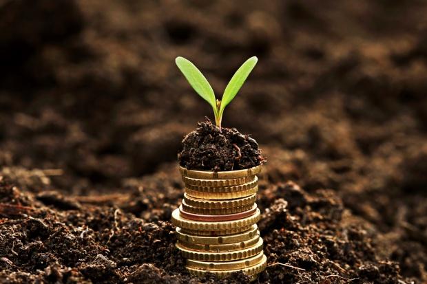1,2 mld zł w tym roku wypłaciła rolnikom Agencja Rynku Rolnego