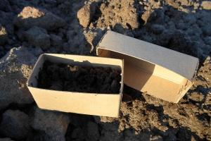 Badania gleby późną jesienią