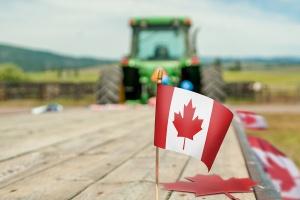 Czy polscy rolnicy podbiją Kanadę? Nasz eksport rośnie, ale CETA jest zagrożeniem