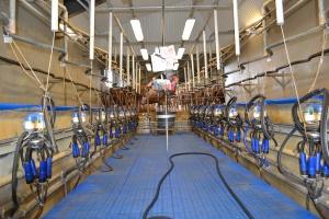 Mycie instalacji udojowej pod kontrolą