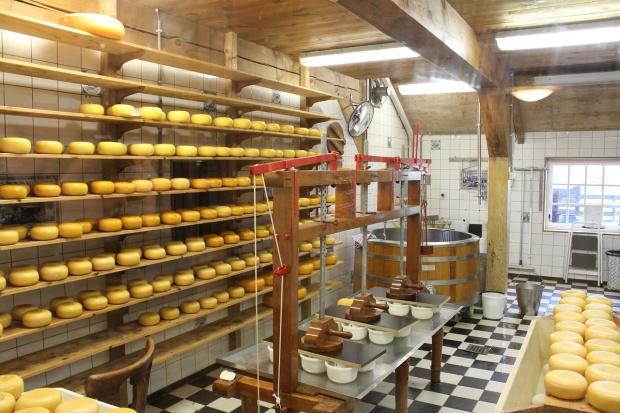 UE: Eksport masła i sera znacznie większy niż w 2015 r.