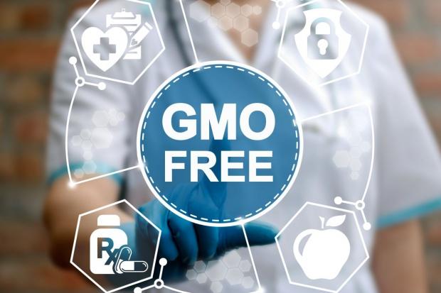Wchodzi w życie ustawa, która umożliwia wprowadzenie zakazu sprzedaży nasion GMO