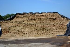 Koszty produkcji kukurydzy i sianokiszonki
