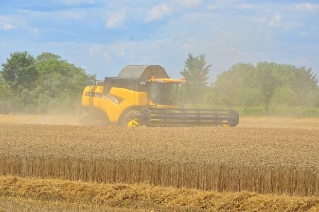 Ukraina: Wstępne dane dotyczące zbiorów roślin uprawnych w 2016 r.