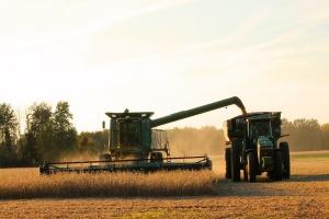 Niemcy: 9 tys. mniej gospodarstw w 3 lata
