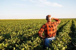 ANR proponuje zmiany w zasadach sprzedaży ziemi