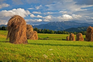 Gospodarstwa, które utracą ONW, będą miały okres przejściowy