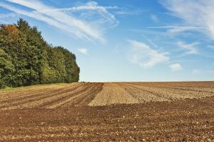 Rolnik – zawód reglamentowany tak, jak ziemia