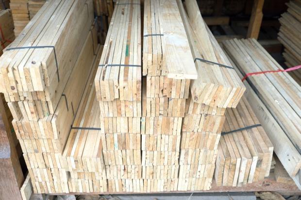 Zachodniopomorskie: Leśnicy sprzedali najcenniejsze drewno