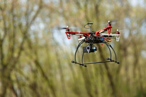 Drony wielkości owadów jako zapylacze roślin