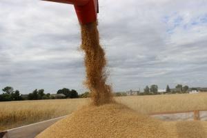 Rosja: Eksport zbóż wolniejszy niż w poprzednim sezonie