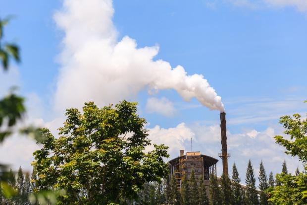 280 mln zł na pożyczki z NFOŚiGW dla firm na poprawę jakości środowiska