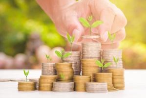 MRiRW: Ok. 58 mln euro na wdrażanie innowacji w sektorze rolnym