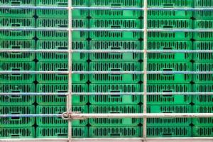 Rosja:  Poszerzenie restrykcji na import z Polski wraz z ptasią grypą
