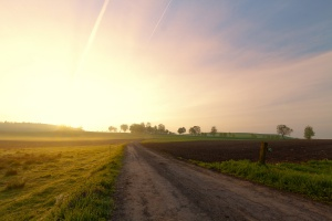 Sejm skierował nowelę ustawy o podatku rolnym do prac w komisjach
