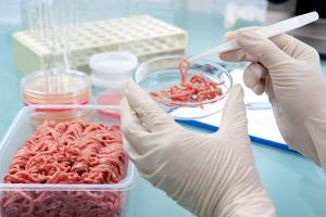 KIL-W: Zbiera podpisy pod projektem ustawy dot. bezpieczeństwa żywności
