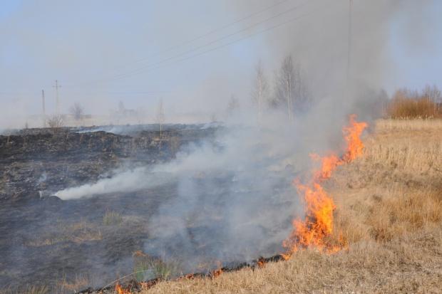 Strażacy apelują, aby nie wypalać traw