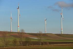 Udział kosztów energii w polskim rolnictwie zbyt wysoki