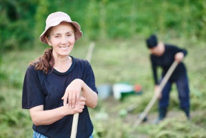 Rolnictwo potrzebuje coraz więcej pracowników sezonowych