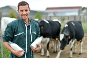 W 2017 r. KE oczekuje wzrostu dostaw mleka o 0,6 proc.