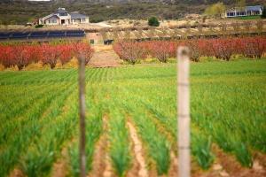 Co ma górnictwo do zasad sprzedaży ziemi?