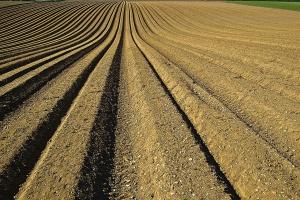 Francja: Rolnicy za ograniczeniem utraty gruntów rolnych