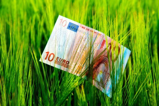 Moncalvo: Polska i Włochy powinny razem walczyć o nowy budżet dla rolników po 2020 r.