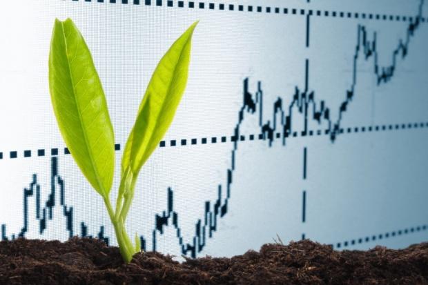 Antagonizm i synergizm składników pokarmowych oraz ich przyswajalność  z gleby