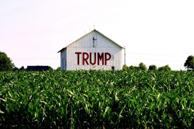 Amerykańska wieś poparła Trumpa, tymczasem prezydent planuje cięcia w rolnictwie