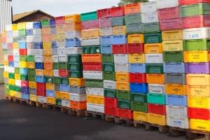 Dania: Rekordowy eksport rolno-spożywczy