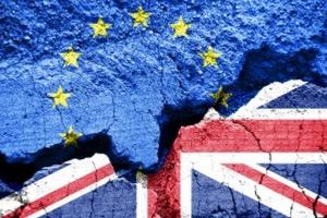 Copa-Cogeca o Brexicie