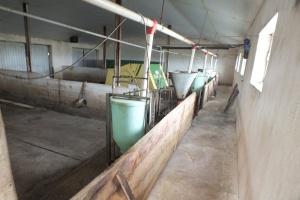 Zaostrzają się warunki dotyczące sprzedaży mięsa z obszaru ASF