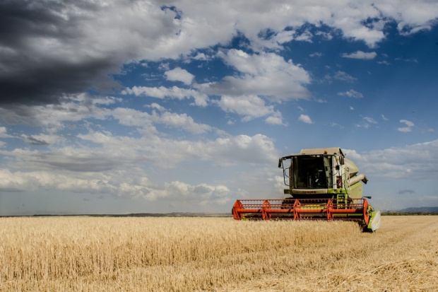 IGC: Wzrosła prognoza światowej produkcji zbóż w sezonie 2016/2017