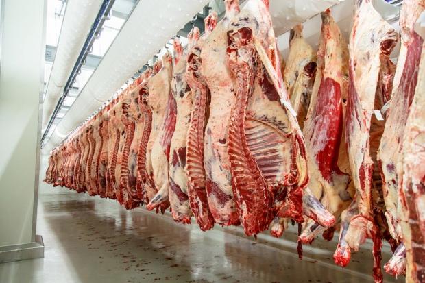 Rada Sektora Wołowiny chce zakazu importu wołowiny z Brazylii