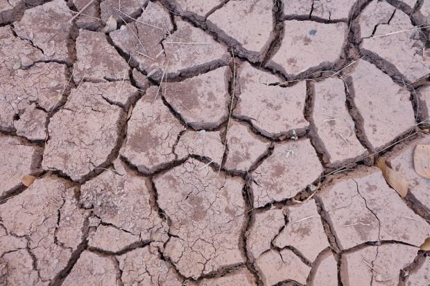 Włochy: Niespotykana o tej porze roku susza na północy kraju