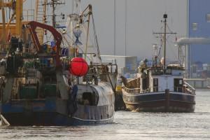 Kołobrzescy armatorzy o zniesieniu możliwości przekazywania kwot połowowych