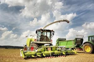 Rosja: Rozbieżne prognozy zbiorów zbóż w 2017 r.