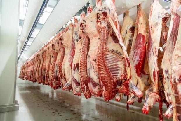 USA: Wzrosła produkcja mięsa