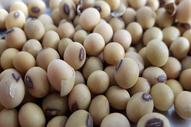 UE: Po raz pierwszy opublikowano bilans proteinowy