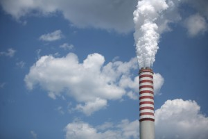 Copa i Cogeca z radością przyjęły głosowanie w sprawie walki ze zmianą klimatu