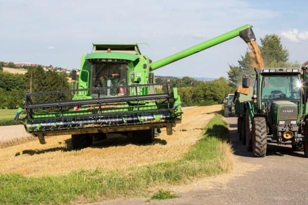 FAO: Marginalny wzrost prognozy światowej produkcji zbóż