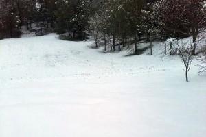 Piękną zimę mamy tej wiosny