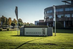 UE: Apel do europosłów o śledztwo w sprawie giganta chemicznego Monsanto