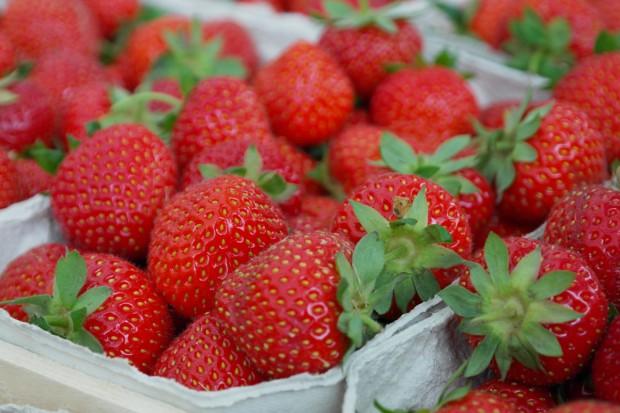 Bronisze: Pierwsze polskie truskawki o połowę droższe niż rok temu
