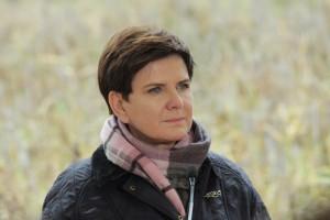 Premier w liście: Sprawy wsi i lasów, to zadanie o strategicznym znaczeniu dla rządu