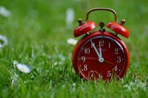Trzy czwarte wniosków o dopłaty bezpośrednie w ARiMR