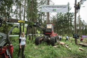Puszcza Białowieska: Ekolodzy przypięli się do drzew; MŚ to atak wymierzony w rząd