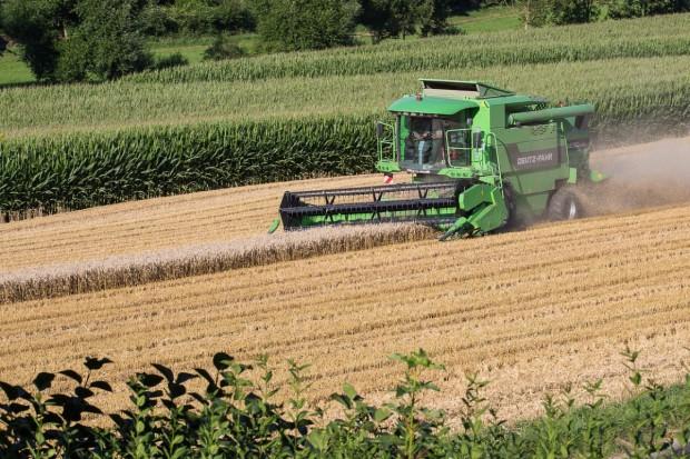 Giełdy krajowe: Mniejsza podaż zbóż