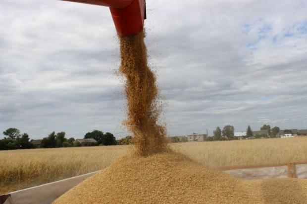 Rosja: Lekki wzrost prognozy eksportu zbóż