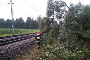 Rzecznik PSP: 1100 interwencji strażaków po burzach